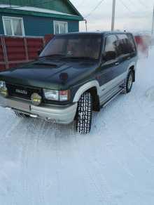 Зея Bighorn 1991