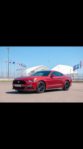 Омск Mustang 2015