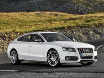 Audi S5 1 поколение, 03.2009 - 10.2011, Лифтбек