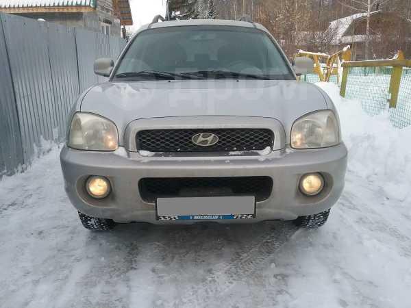 Hyundai Santa Fe, 2002 год, 310 000 руб.