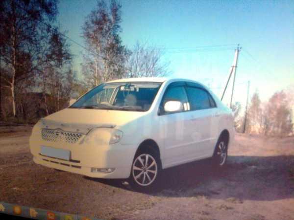 Toyota Corolla, 2003 год, 310 000 руб.