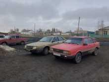 Славгород 80 1984