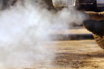 ГИБДД впервые раскрыла данные об экологических классах автомобилей в стране
