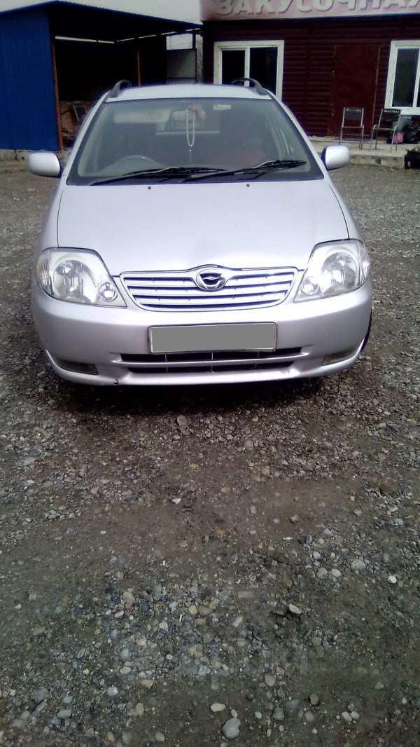 Toyota Corolla Fielder, 2003 год, 265 000 руб.