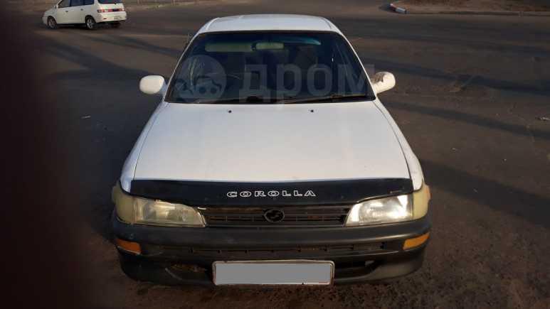 Toyota Corolla, 1995 год, 118 000 руб.