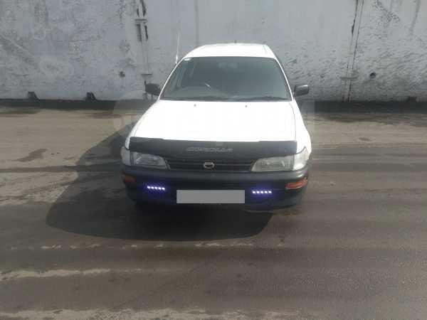 Toyota Corolla, 2001 год, 165 000 руб.