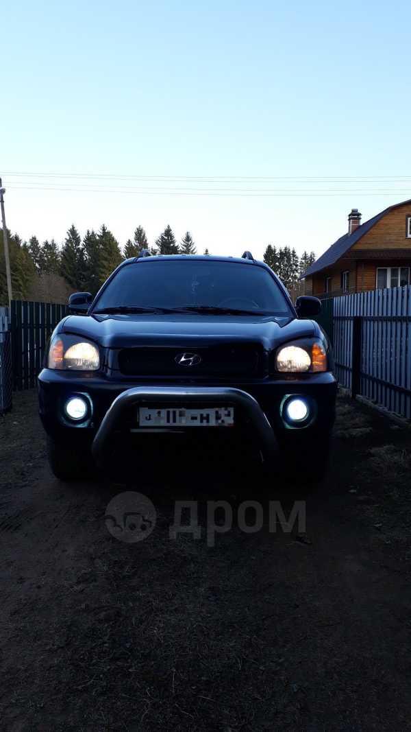 Hyundai Santa Fe, 2002 год, 350 000 руб.