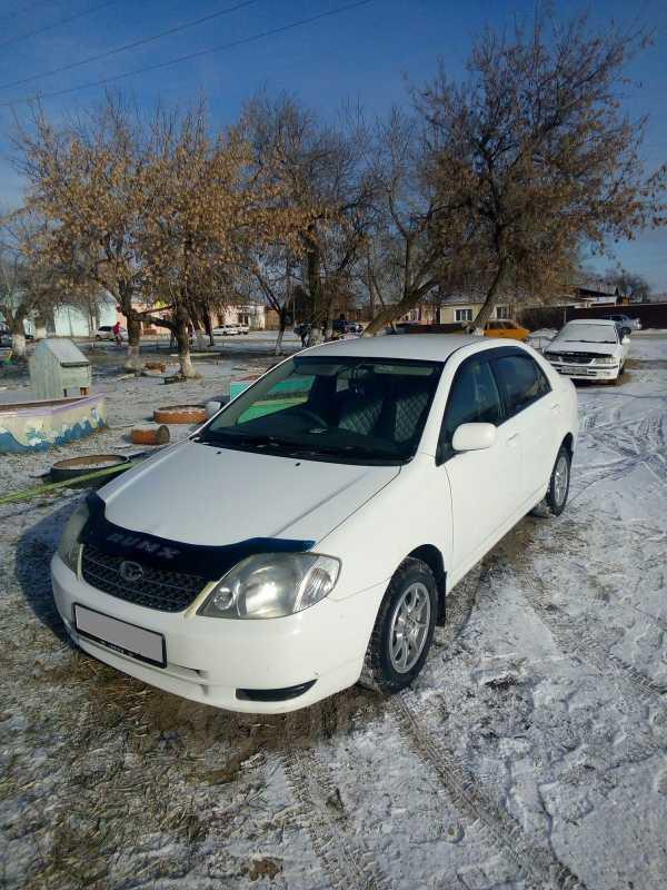 Toyota Corolla, 2002 год, 339 000 руб.