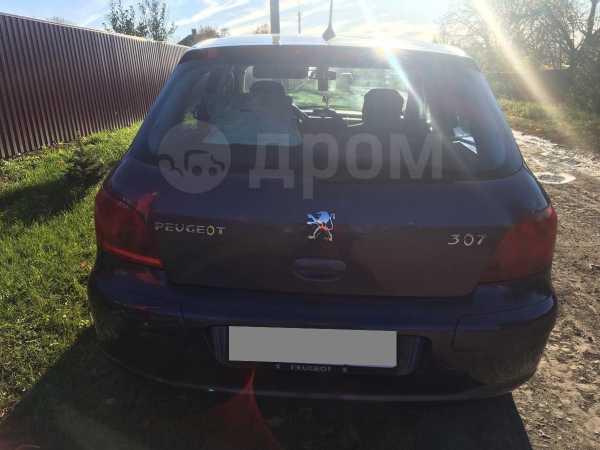 Peugeot 307, 2002 год, 176 000 руб.
