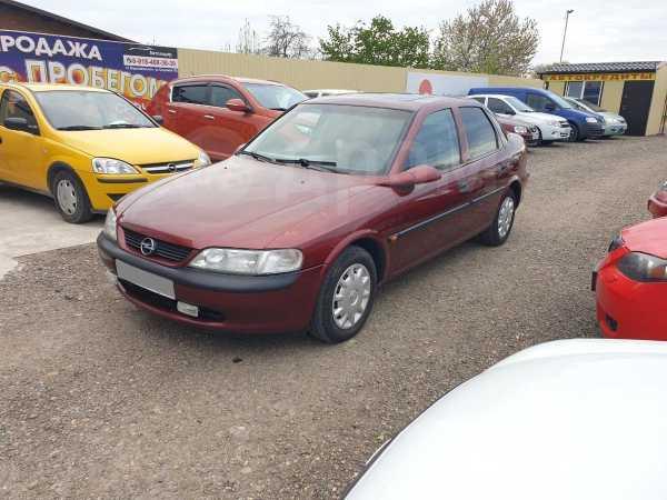 Opel Vectra, 1996 год, 138 000 руб.