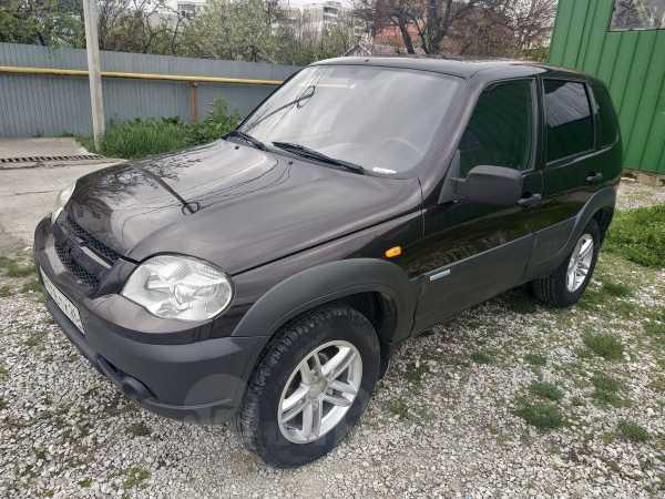 Chevrolet Niva, 2010 год, 290 000 руб.