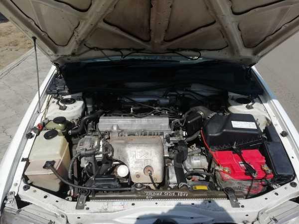 Toyota Corona Premio, 1988 год, 290 000 руб.