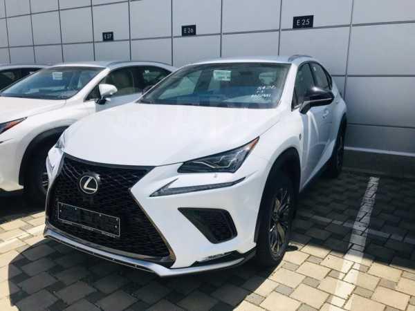 Lexus NX300, 2019 год, 3 592 000 руб.
