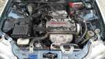 Honda Domani, 1998 год, 110 000 руб.