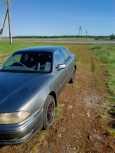 Toyota Camry, 1993 год, 120 000 руб.