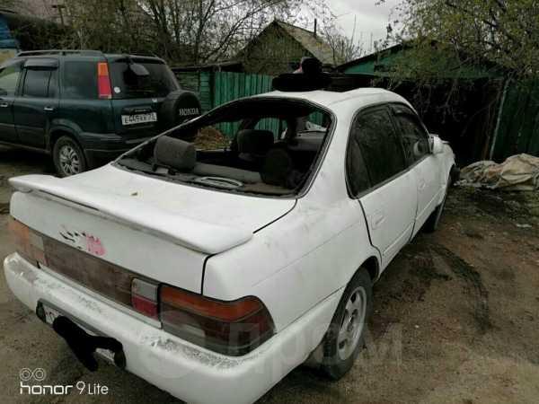 Toyota Corolla, 1993 год, 30 000 руб.