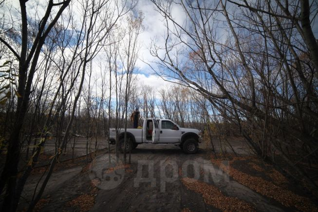 Ford F250, 2008 год, 1 100 000 руб.