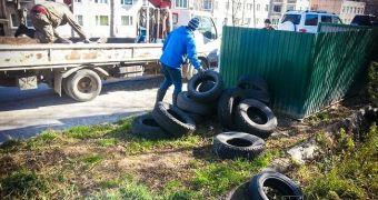 Их отправляют в Приморский край для переработки.