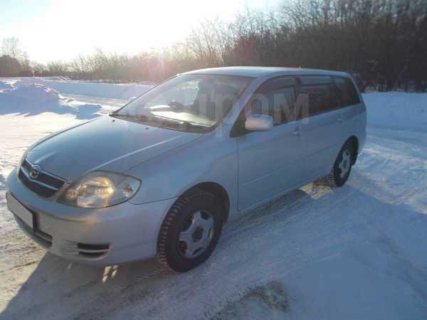 Toyota Corolla Fielder, 2002 год, 310 000 руб.