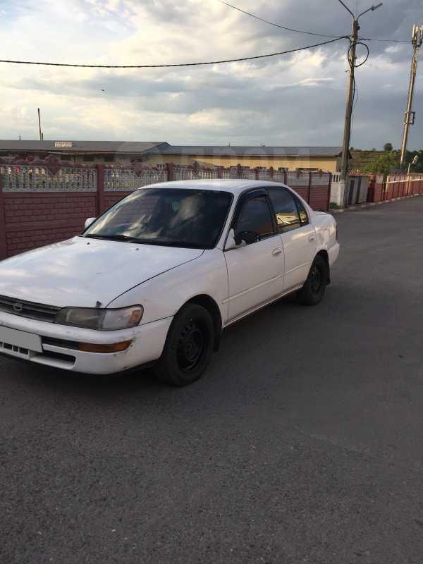 Toyota Corolla, 1993 год, 116 000 руб.