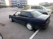 Искитим 190 1993