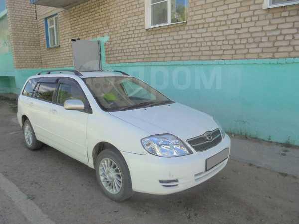Toyota Corolla Fielder, 2004 год, 500 000 руб.