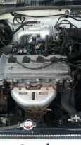 Toyota Caldina, 2001 год, 257 000 руб.
