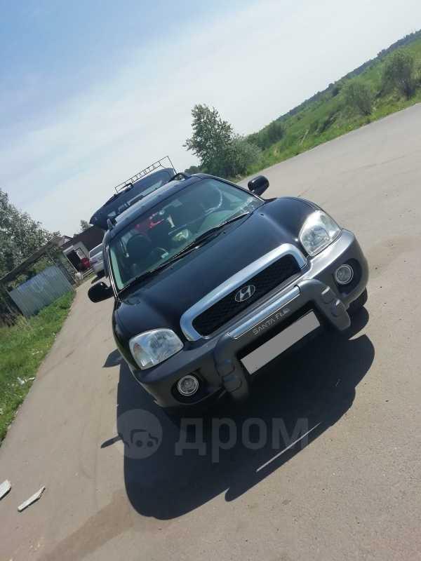 Hyundai Santa Fe, 2003 год, 410 000 руб.