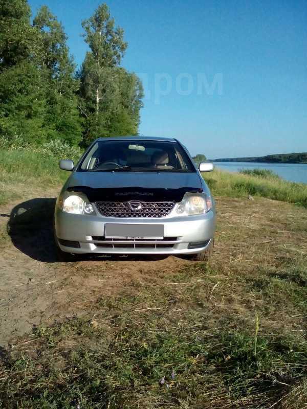 Toyota Corolla Fielder, 2002 год, 280 000 руб.