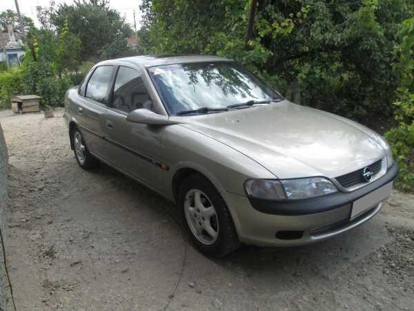 Opel Vectra, 1996 год, 210 000 руб.