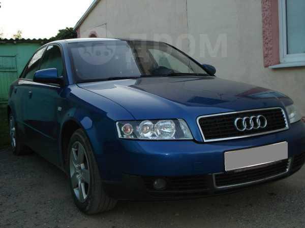 Audi A4, 2001 год, 333 000 руб.