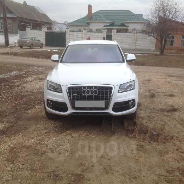 Audi Q5, 2009 год, 950 000 руб.