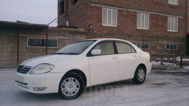 Toyota Corolla, 2001 год, 239 000 руб.