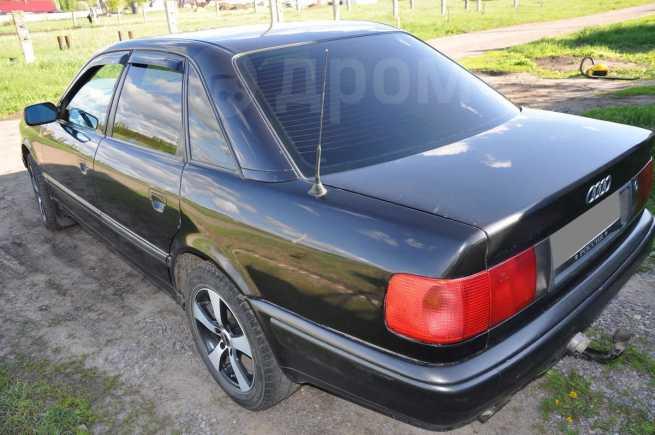 Audi 100, 1993 год, 190 000 руб.