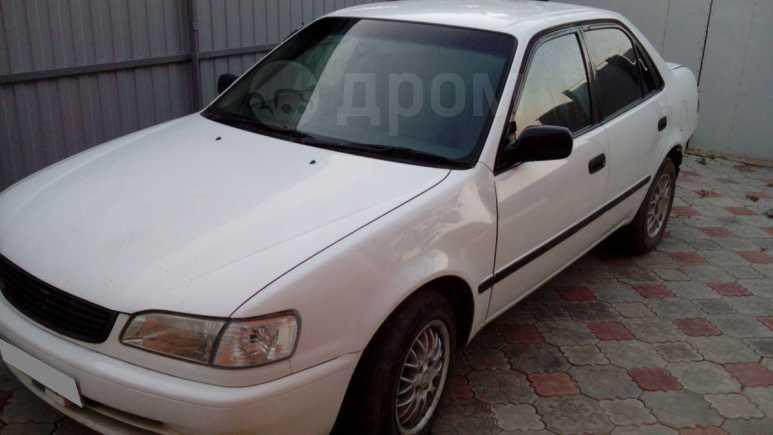Toyota Corolla, 1998 год, 75 000 руб.