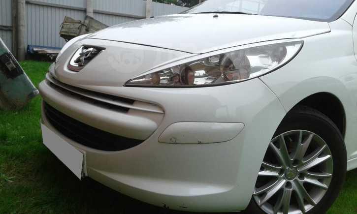 Peugeot 207, 2009 год, 319 990 руб.