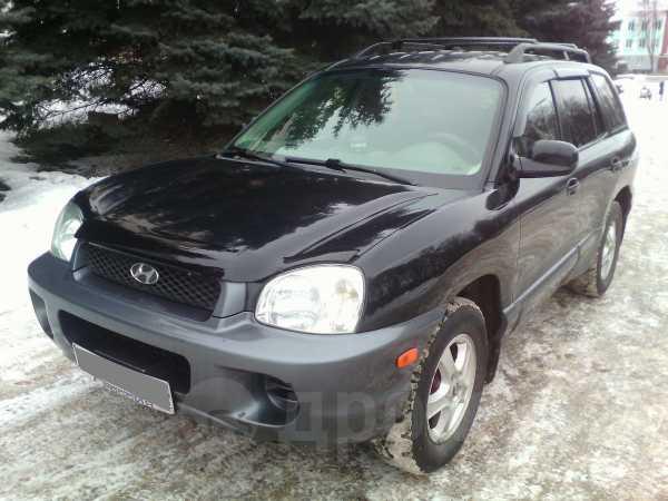 Hyundai Santa Fe, 2003 год, 345 000 руб.