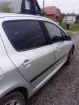 Peugeot 307, 2004 год, 230 000 руб.
