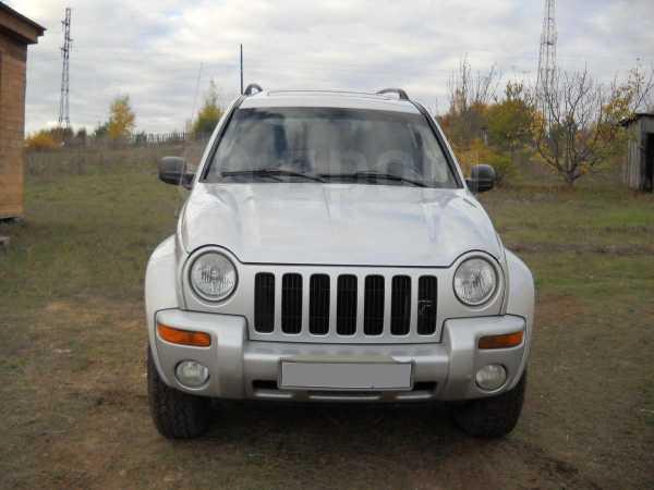 Jeep Liberty, 2002 год, 335 000 руб.
