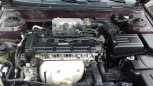 Hyundai Elantra, 2006 год, 257 000 руб.