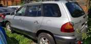 Hyundai Santa Fe, 2001 год, 275 000 руб.