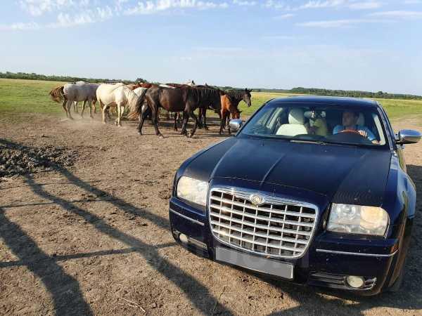 Chrysler 300C, 2004 год, 460 000 руб.