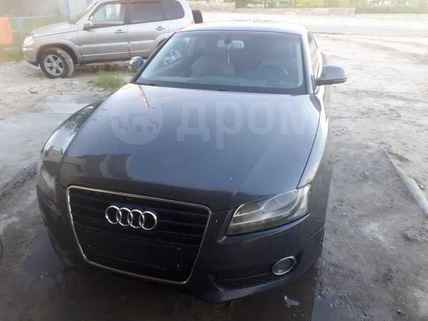 Audi A5, 2007 год, 615 000 руб.