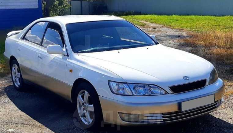 Toyota Windom, 1998 год, 310 000 руб.