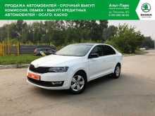 Новосибирск Rapid 2017