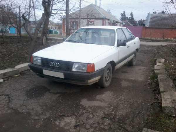 Audi 100, 1983 год, 80 000 руб.