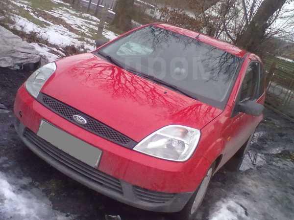 Ford Fiesta, 2004 год, 250 000 руб.