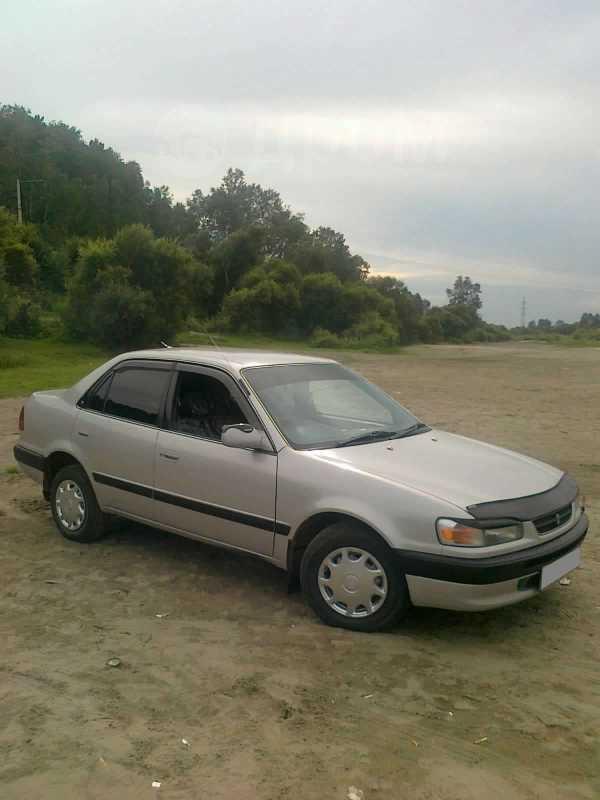Toyota Corolla, 1996 год, 55 000 руб.