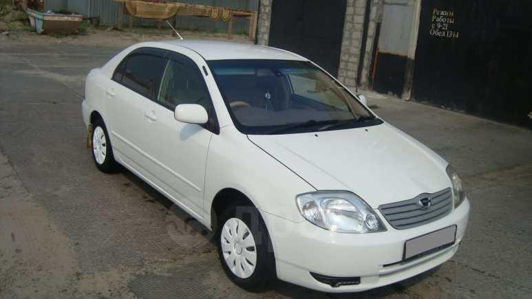 Toyota Corolla, 2003 год, 299 999 руб.