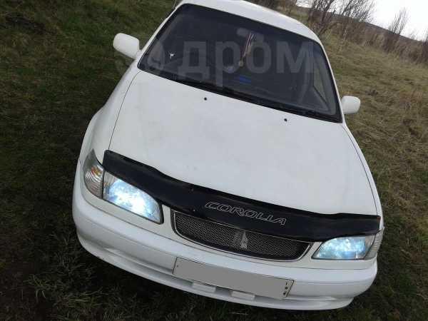 Toyota Corolla, 1998 год, 215 000 руб.